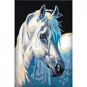 Лошадь. Набор для рисования картины по номерам
