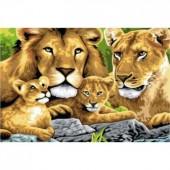 Львиная семья. Набор для рисования картины по номерам